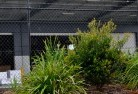 Morpeth Chainlink fencing 13